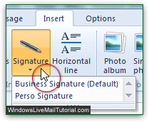 Manually add an email signature